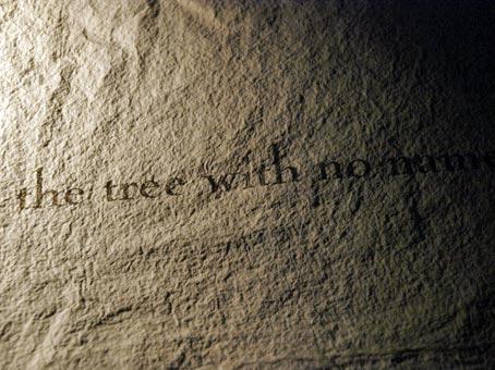 Nur geschriebene udn gedruckte Worte kann man anfassen. Bild: Heinz Knotek